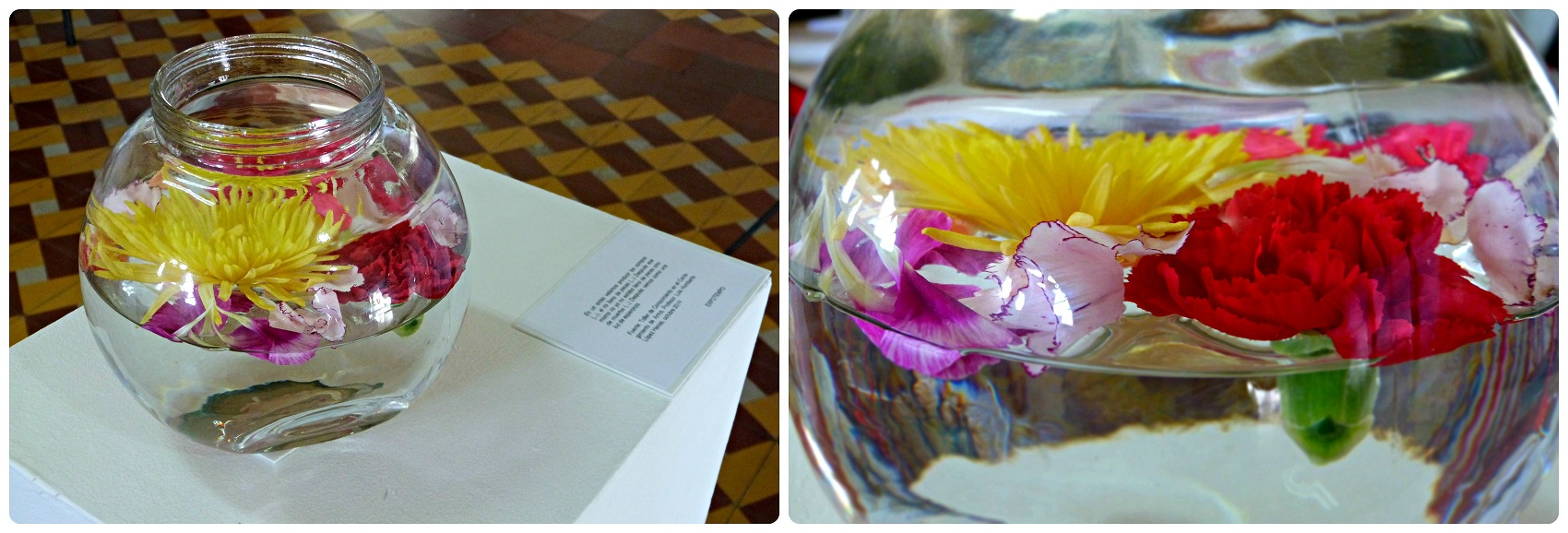 Fleurs dans un bol d'eau à exposées à l'expo Tempo à Aguadas