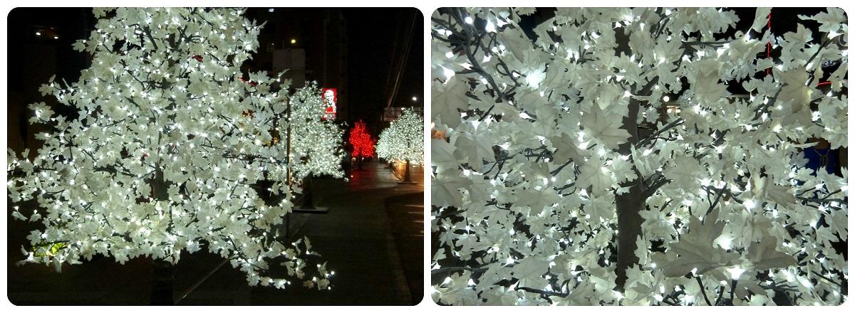 árboles blancos iluminados delante del centro comercial Portal del Quindío de Armenia