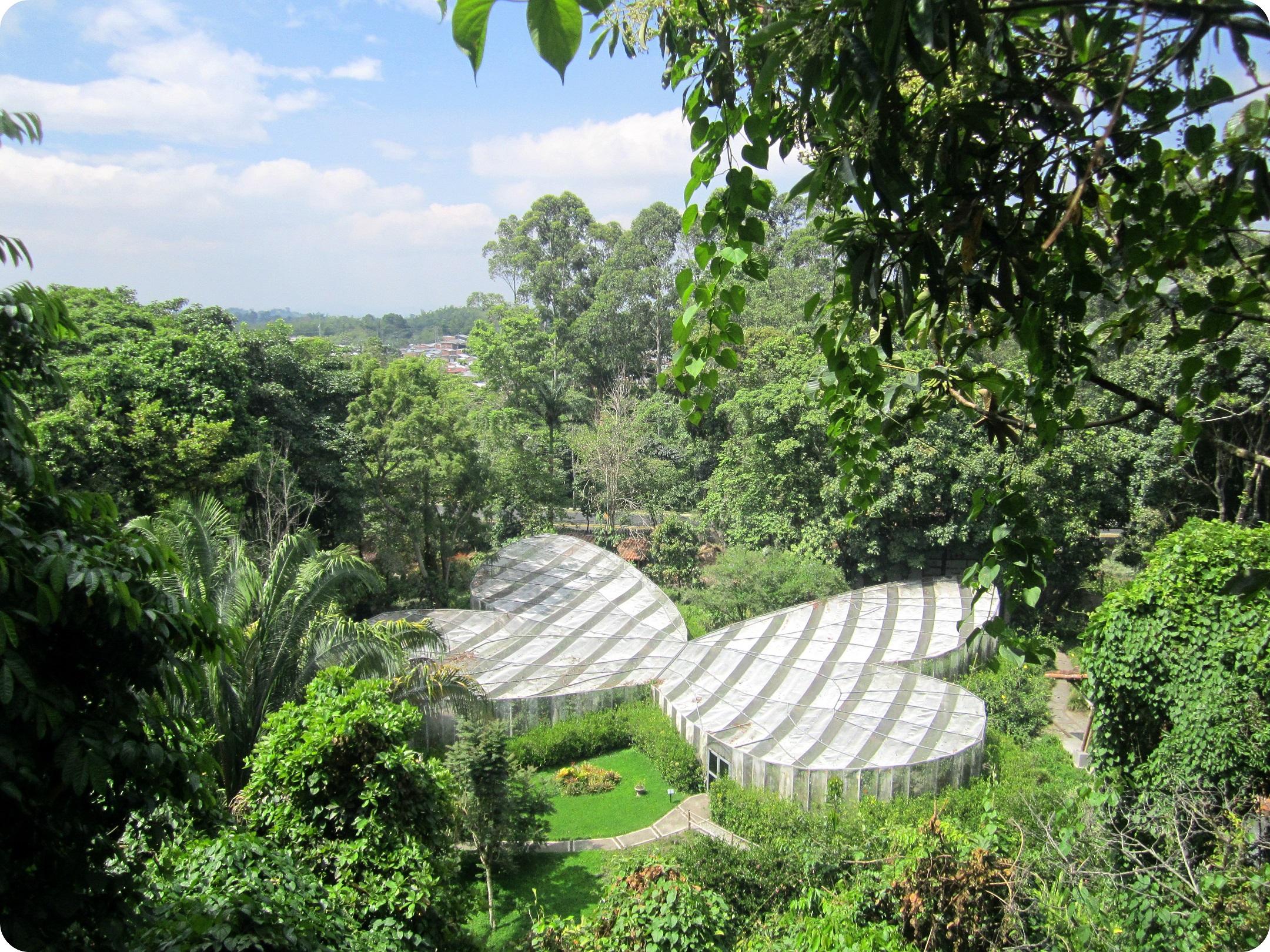 Vista sobre el Mariposario en forma de mariposa en el jardín botánico del Quindío en Calarcá