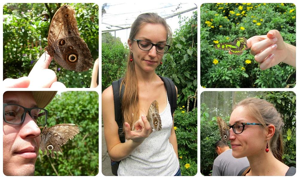 Charlène y Charles con mariposas en las manos en el mariposario del jardín botánico del Quindío en Calarcá